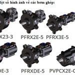 Bơm cánh gạt ghép tầng Kiểu PFEX, PFRX, PVPCX2