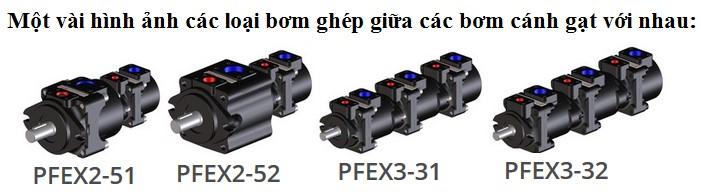 Bơm cánh gạt ghép tầng Kiểu PFEX, PFRX, PVPCX2E